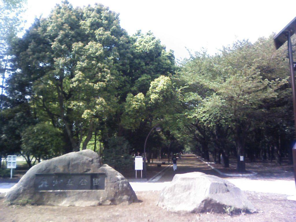 2009/04/19 09:34